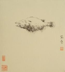 Flower, Bird, Fish, Worm - Fish by N