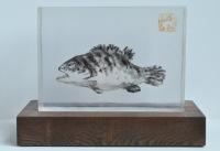 Frozen Fish by Nan Chao