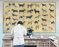 Daily Life System. F1 - Animal Hospi