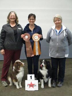 Willow-Bronze  Kiwi--Gold & judges