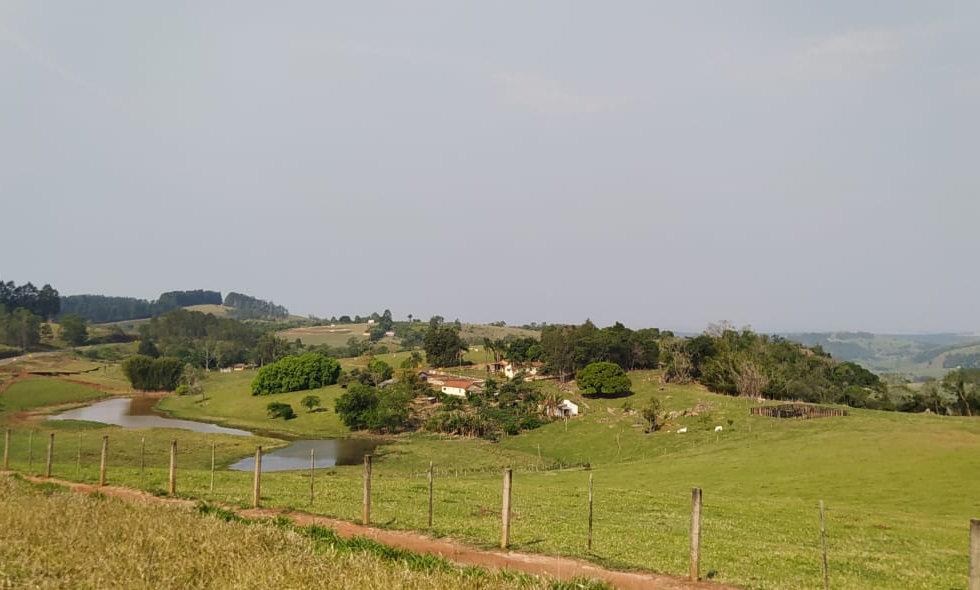 REF 264 Sítio  35,5 alqueires, região Tejupá /SP.