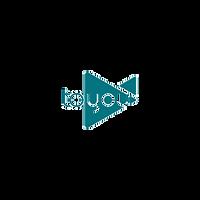 Toyou logo