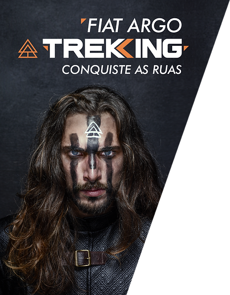 home-hero-viking.png