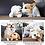 Thumbnail: Cute Animal Shape Heartbeat Lamb Behavioral Training Toy Plush Pet Comfortable