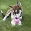 Thumbnail: Kong Puppy - Pink