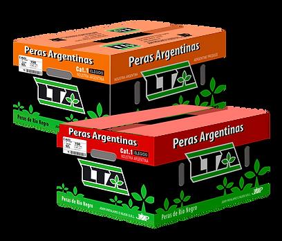 Patalano LTA caja.png