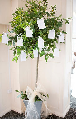 Table Plan - Topiary Tree 7ft - Printed Tags