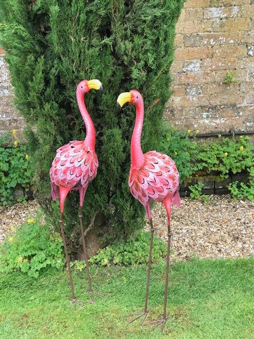 Flamingo s