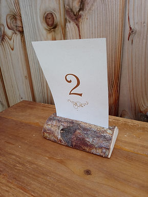 Table Number Card Metallic Font  - Mounted in mini Log