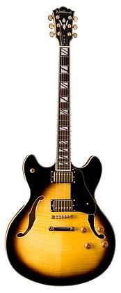 Washburn - Fw-Hb Electric Guitar W/Case Fw