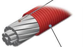La ligne de frein (hose)