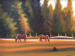 IMG_3250[1]Pasture Serenity by Chery