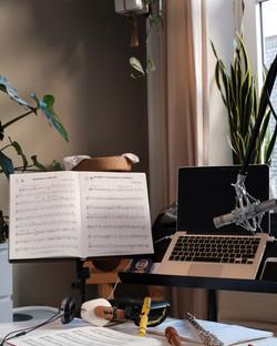 Online Querflötenunterricht, Nürnberg Schwabach,
