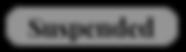 Screen Shot 2020-03-25 at 3.48.57 PM.png
