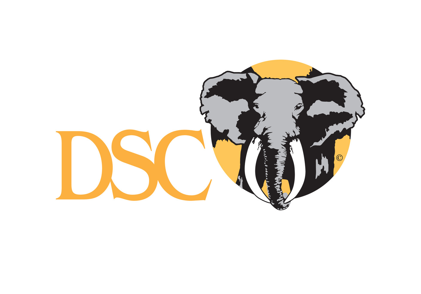 DSC-logo.jpg