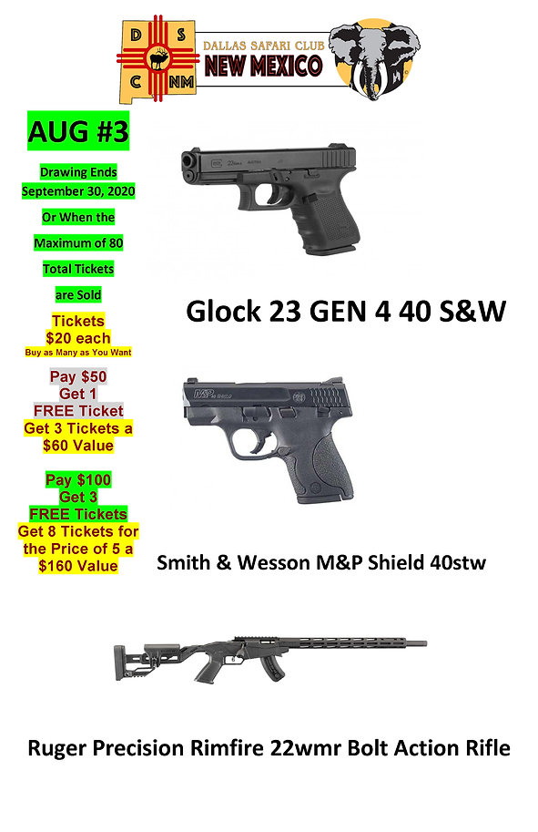 AUG #3 2020 Pistols Description11x17 8-1