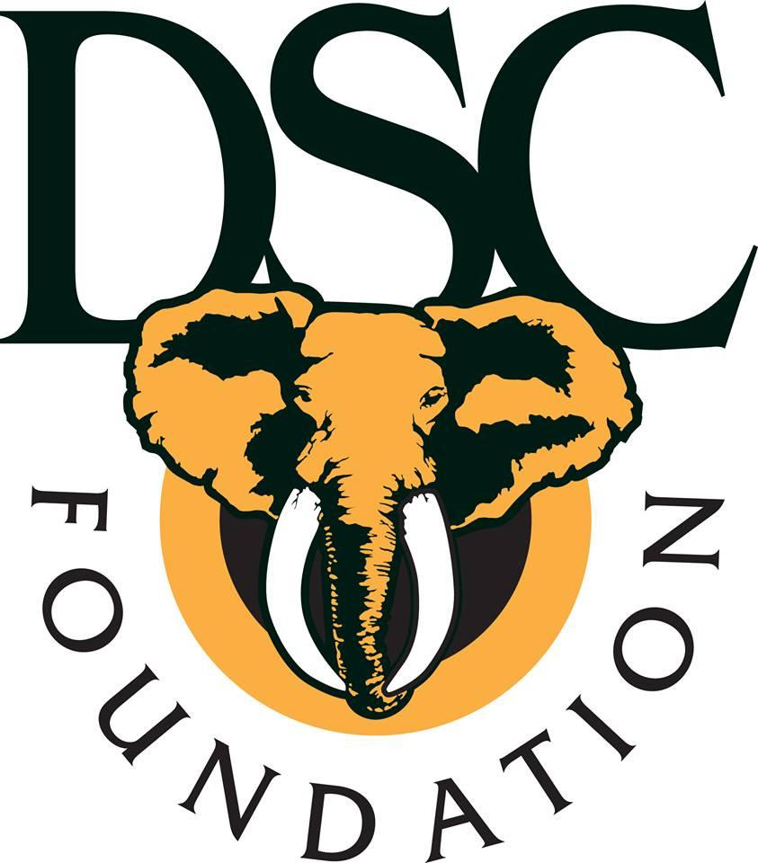 DSC Foundation