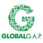 LOGO GLOBAL GAP.jpg