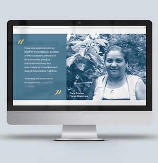 VL-web site-presentmac.jpg
