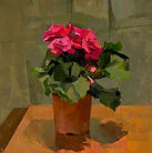 catharine kehoe begonia 2008 oil on  8 b