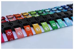 Paw print whelping id puppy collars