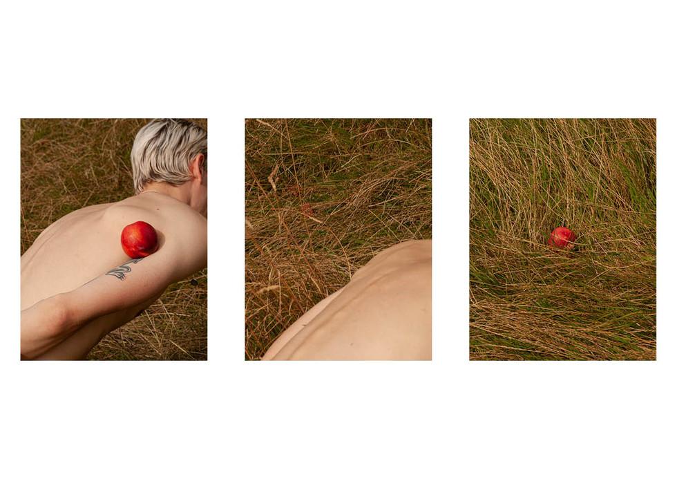 Hide & Jack5.jpg