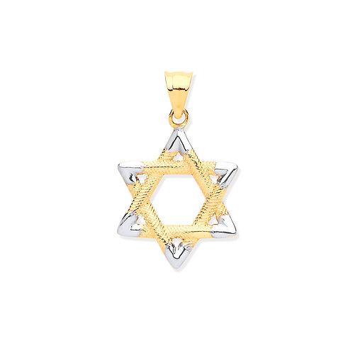 White & Yellow Gold Star of David Pendant