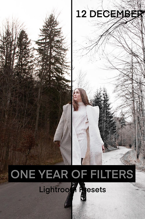 ONE YEAR OF FILTERS - 12 DECEMBER