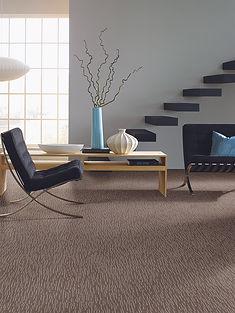 packard discount carpet grass valley