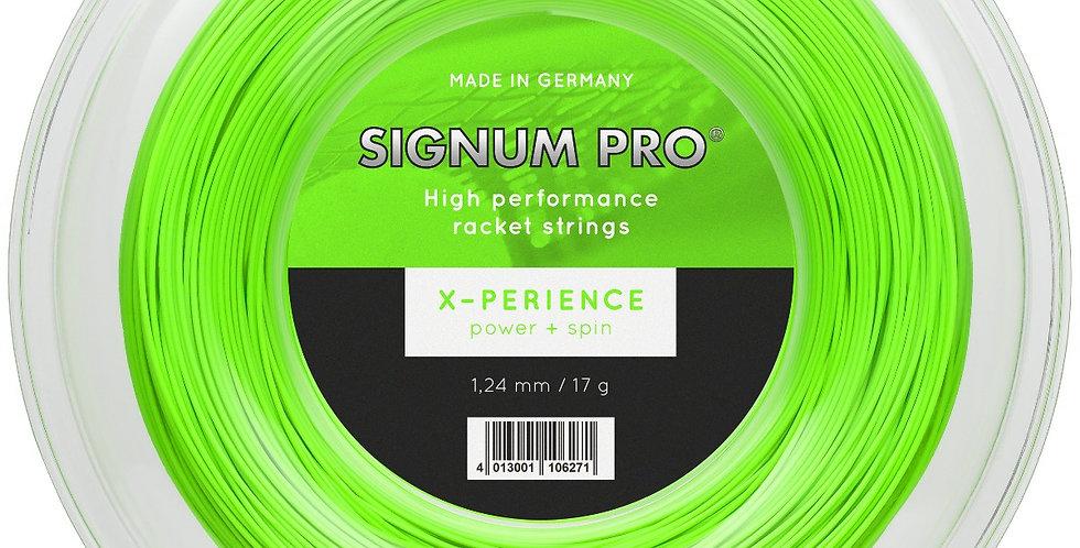 X-Perience Rollo, Signum Pro