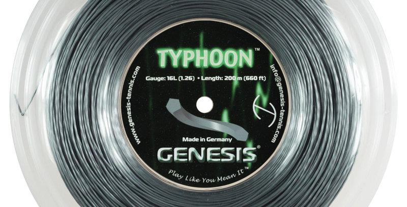 Typhoon Rollo, Genesis