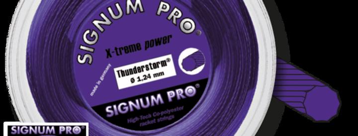 Thunderstorm Rollo, Signum Pro