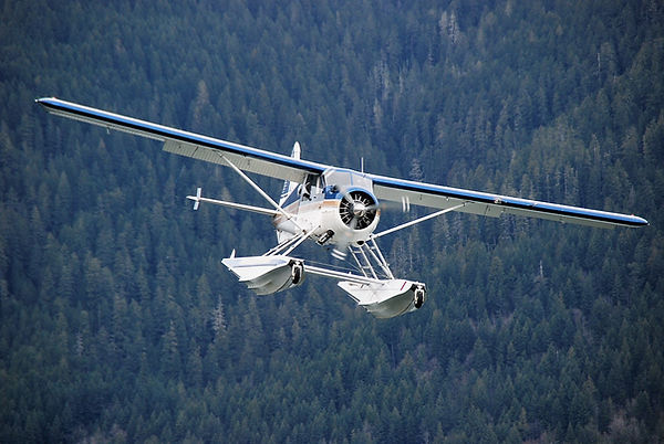 N8134G on final approach Lake Cushman