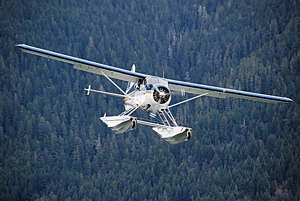N8134G on final approach Lake Cushman