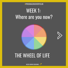 Week 1- Wheel of life.jpg
