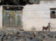 View of Oman.jpg