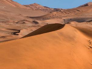 Namib Desert.jpeg