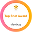 Top Shot Award.png