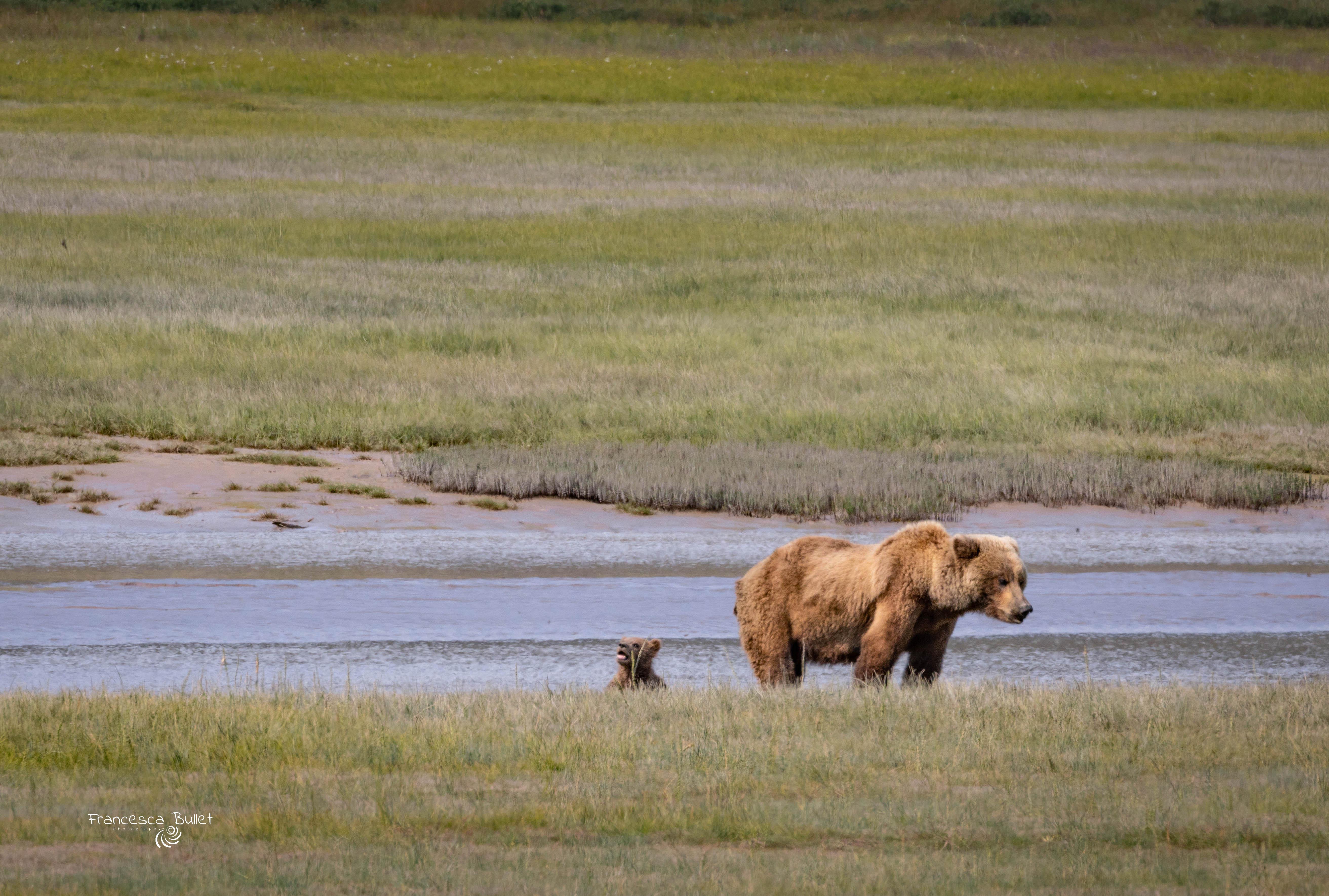 Alaska, Lake Clark National Park