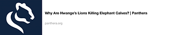 sito articolo Why are Hwange's Lion kill