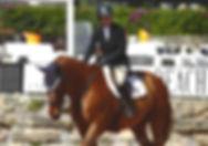 Equine Therapies | Dr. Maloney | Dr. Elizabeth Maloney | Equine Veterinarian | Horse Vet | Liz Maloney | Massachusetts Vet