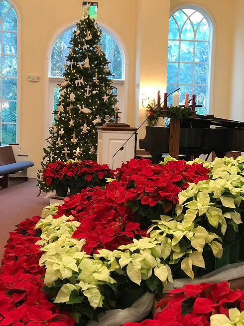 Christmas Sanctuary.JPG