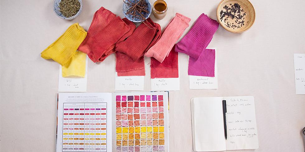 Giveaway: DIY Vegetable-Dye Socks Pack