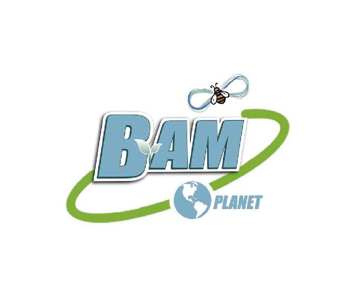Bam Active