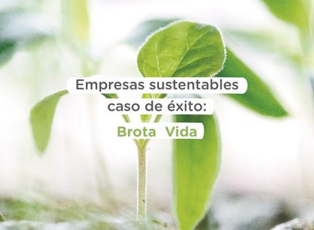 ¿Cómo ser una empresa sustentable? Ejemplo de Brota, marca 100% comprometida