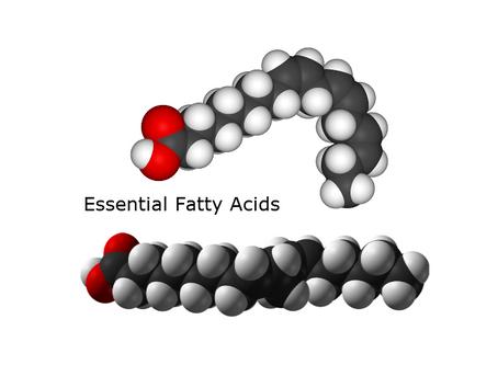 Essential Fatty Acids