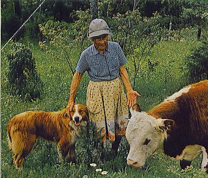 Granny Henderson Buffalo National Park Arkansas