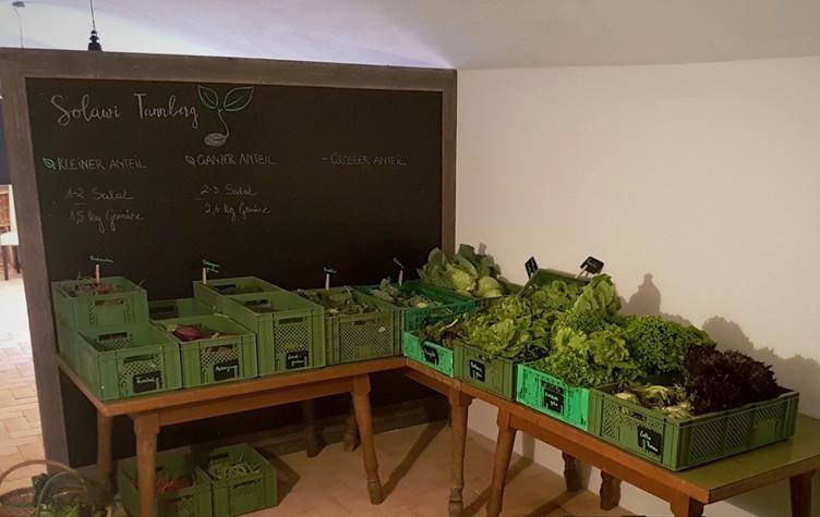 Gemüsevielfalt im Juni