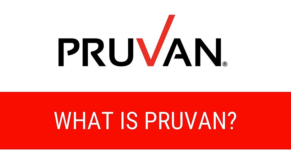 Pruvan: The perfect mobile solution