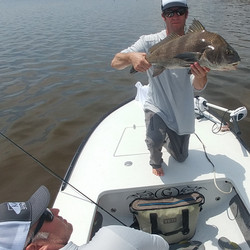 Captain John Tarr|Black Drum on Fly